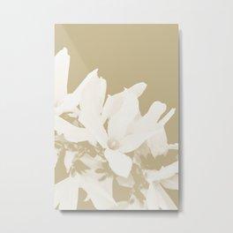 BEIGE SERIES Forsythia close-up monochrome Metal Print