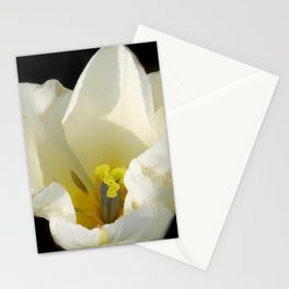 flowers of spring on black -71- Stationery Cards