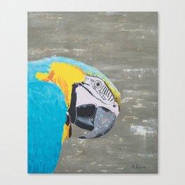 Oscar the Macaw Parrot Canvas Print