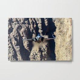 F-35 in Death Valley Metal Print