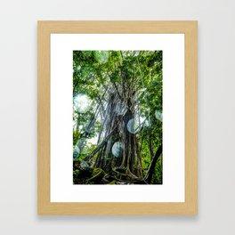 Rainy Day Under the Banyon Tree Framed Art Print