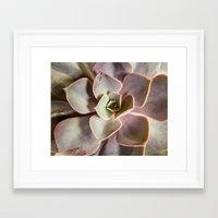 succulent Framed Art Prints featuring succulent by Bonnie Jakobsen-Martin