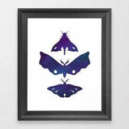 Three Moths (White) Framed Art Print