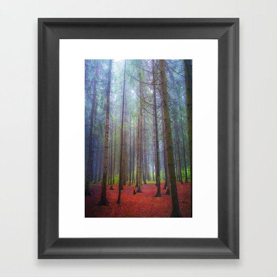 Back to the forest Framed Art Print