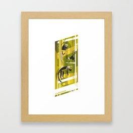 Capuchin Framed Art Print