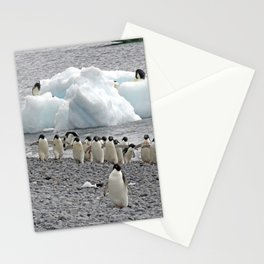 Adelie Penguins Stationery Cards