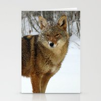 coyote Stationery Cards featuring Coyote by tracy-Me