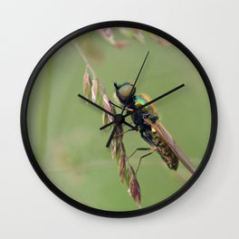 Green Soldier Fly Wall Clock