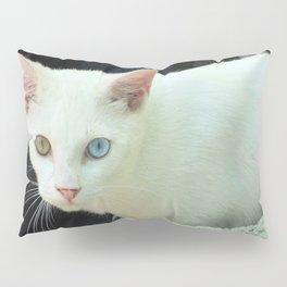 Blue And Green Eyed Cat Pillow Sham