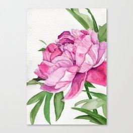 Streak Of the Wild Canvas Print