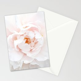 Pastel Rose Stationery Cards