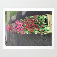 Keukenhof Gardens Art Print