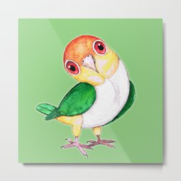 White bellied caique Metal Print