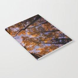 Tree Canopy Notebook