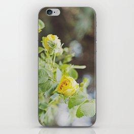 Rosa amarilla iPhone Skin