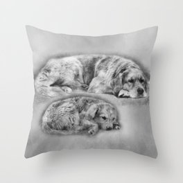 Golden Retriever young and old Throw Pillow