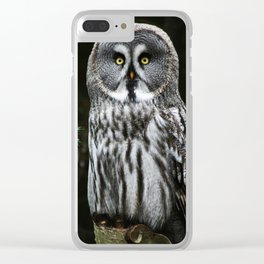 The Great Grey Owl Clear iPhone Case