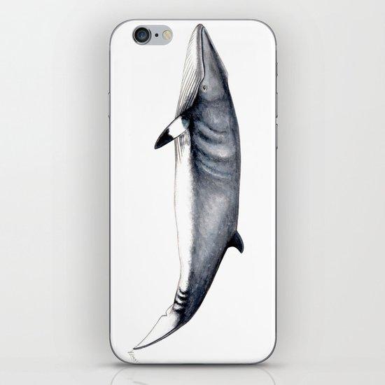 Minke whale by chloeyzoard