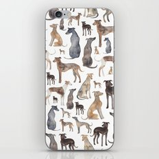 Greyhounds and Whippets iPhone Skin