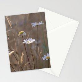 Summer Daze Stationery Cards