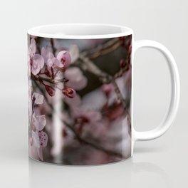 Spring Cherry Tree Blossoms - II Coffee Mug