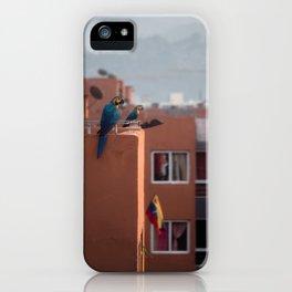 Guacamayas Caraqueñas - Venezuela iPhone Case
