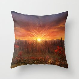Solar Memory Throw Pillow