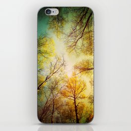 Rest in the forest iPhone Skin