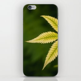 Plant Patterns - Leafy Greens iPhone Skin