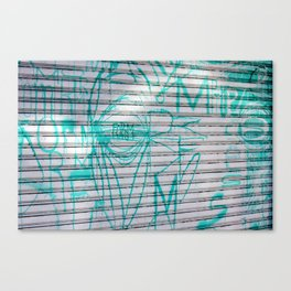 FORM And Function Canvas Print