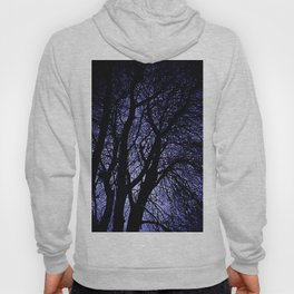 Barren Tree Branches Hoody