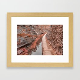 Paw Paw Boardwalk Trail - Pastel Fantasy Framed Art Print
