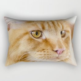 Maine Coon cat Rectangular Pillow