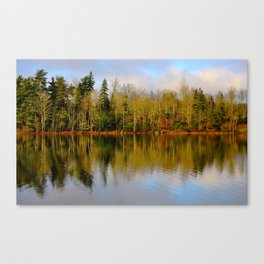 Nature's Best Canvas Print