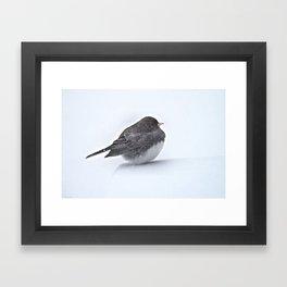 Brave Bird in a Blizzard Framed Art Print