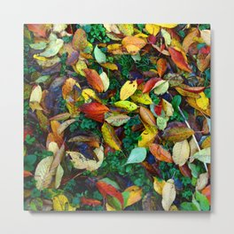 autumn leaves 2 Metal Print