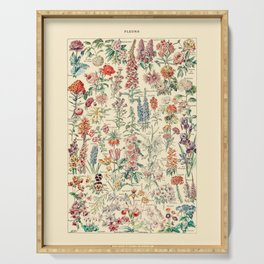 Vintage Floral Drawings // Fleurs by Adolphe Millot 19th Century Science Textbook Artwork Serving Tray