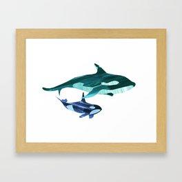A swim together Framed Art Print