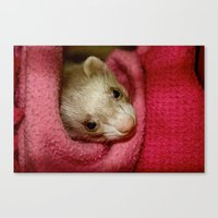 ferret Canvas Prints featuring Ferret by Sabrina Jennis