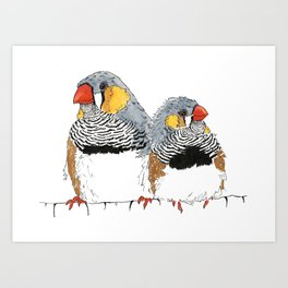 Zebra Finch Buddies Art Print
