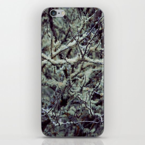 Green Lichen iPhone & iPod Skin
