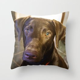I'm Cute and I Know It! Throw Pillow