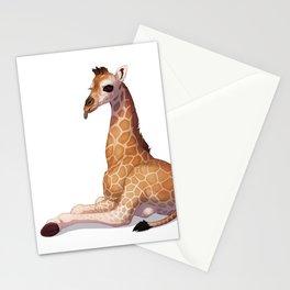 Notch Stationery Cards