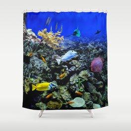 Fishtank Shower Curtain