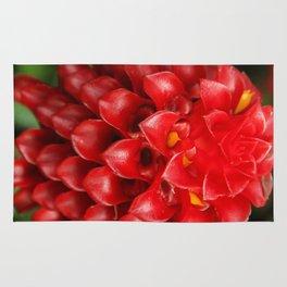 Red Pineapple Ginger Plant Rug