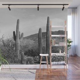 Arizona Wall Mural