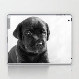 Black labrador puppy Laptop & iPad Skin