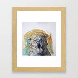 Polar Bear Portrait - Wistful Bear Framed Art Print