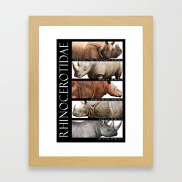Rhinos of the World Framed Art Print
