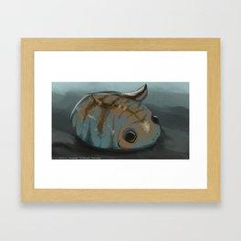 Baby Frog/Tadpole Framed Art Print
